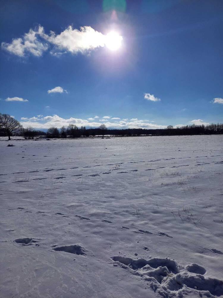 Foto's Winter 2021