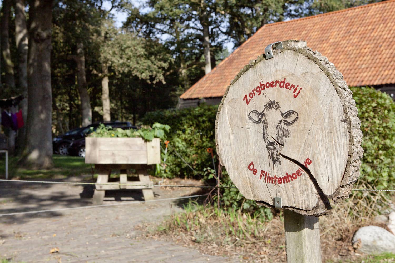 De leuks Leer-Werk-Beleef boerderij staat in Orvelte